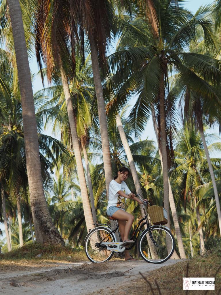ปั่นจักรยานใกล้ๆ โรงแรมมีสวนมะพร้าว